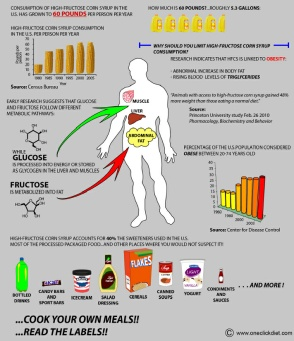 high_fructose_corn_syrup_chart
