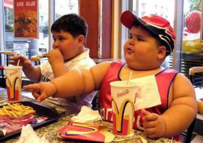 fat-kid-mcdonalds-769134-769471