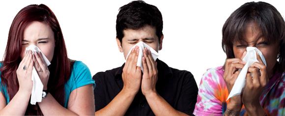 Sneezers3