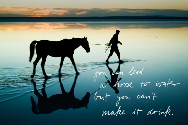 2011_02_horse