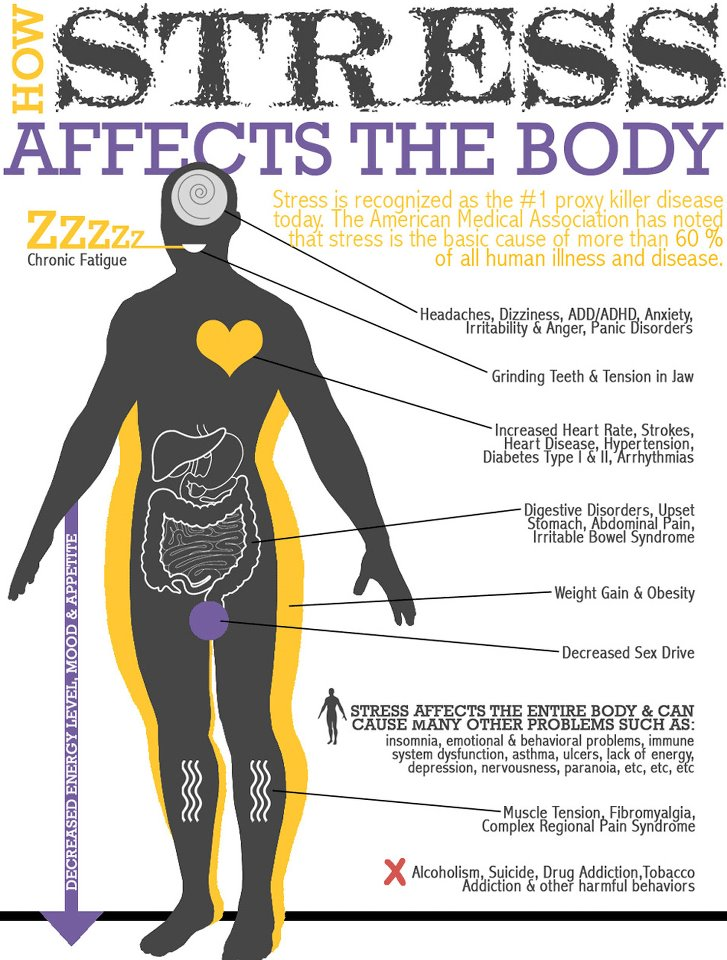 stress-affects-the-body