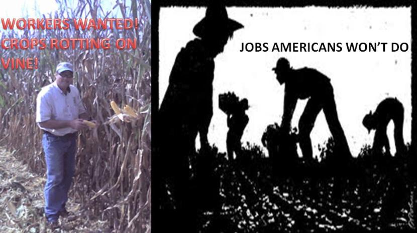 jobs-americans-wont-do
