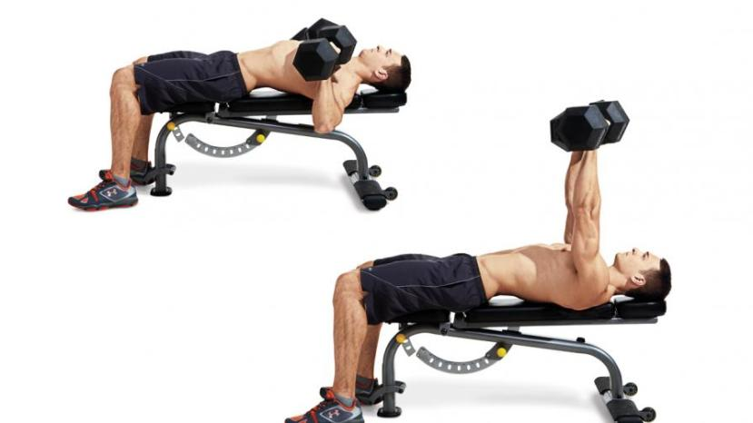 dumbbell-bench-press-chest-weights-main